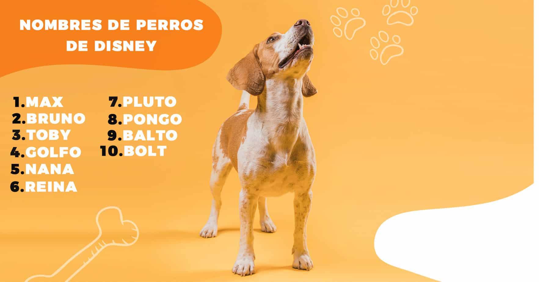 nombres de perros de disney