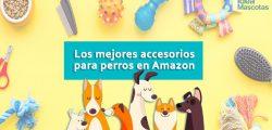 Los mejores Accesorios para perros en Amazon